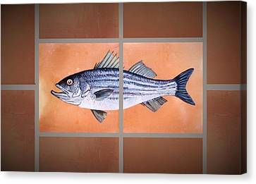 Striped Bass Canvas Print by Andrew Drozdowicz