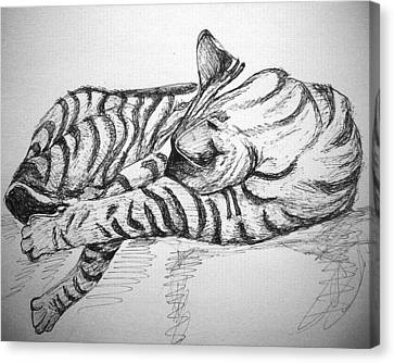 Canvas Print featuring the drawing Stripes by Mary Schiros