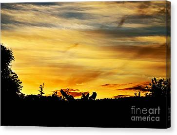 Stripey Sunset Silhouette Canvas Print by Kaye Menner