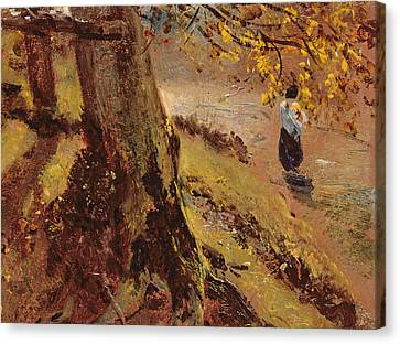 Study Of Tree Trunks Canvas Print by John Constable