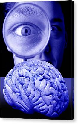 Studying The Brain, Conceptual Image Canvas Print by Victor De Schwanberg