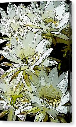 Stylized Cactus Flowers Canvas Print by Phyllis Denton