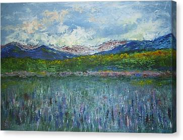 Sugar Hill Nh Canvas Print by Michel Croteau