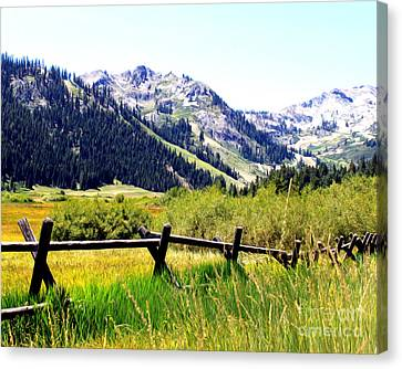 Canvas Print featuring the photograph Summer At Squaw Valley by Anne Raczkowski