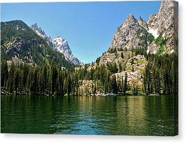 Summer Day At Jenny Lake Canvas Print