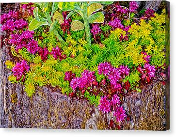 Canvas Print featuring the photograph Summer Delight by Ken Stanback