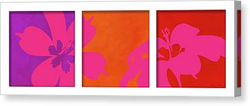 Summer Flowers Canvas Print by Nomi Elboim