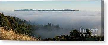 Summer Fog Rolls In Canvas Print by Matt Tilghman