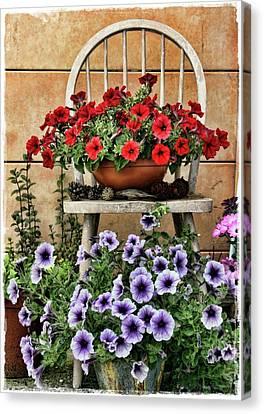 Summer Garden Canvas Print by Julie Williams