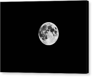 Summer Moon Canvas Print by Paul Howarth
