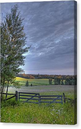 Summer Pasture Canvas Print by Heather  Rivet