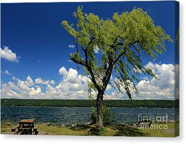 Summer Picnic Canvas Print by Adam Jewell