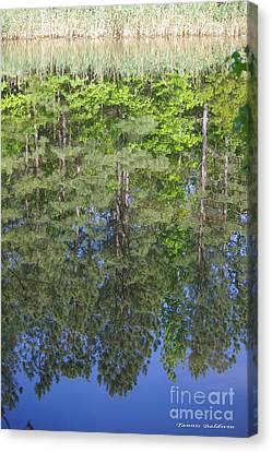 Canvas Print featuring the photograph Summer Reflection by Tannis  Baldwin