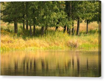 Summer Reflections Canvas Print by Karol Livote