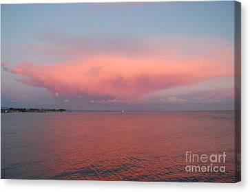 Summer Sky Canvas Print by Garnett  Jaeger