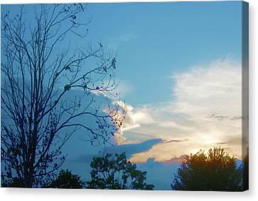 Summer Sky Canvas Print by Juliana  Blessington