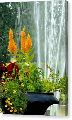 Canvas Print featuring the photograph Summer Spray by Michelle Joseph-Long
