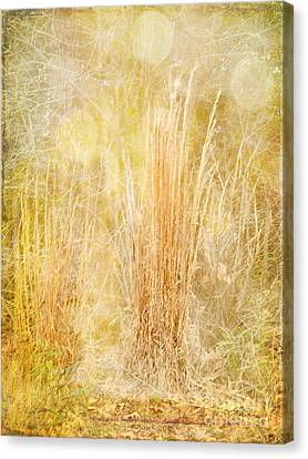 Summer's End Canvas Print by Judi Bagwell