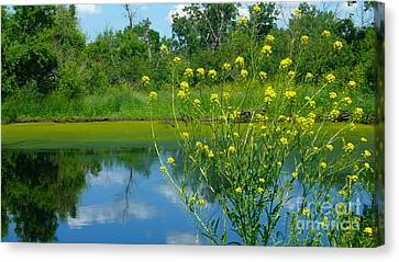 Canvas Print featuring the photograph Summer's Glory by Jim Sauchyn