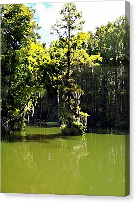Summertime At Green Field Lake Canvas Print