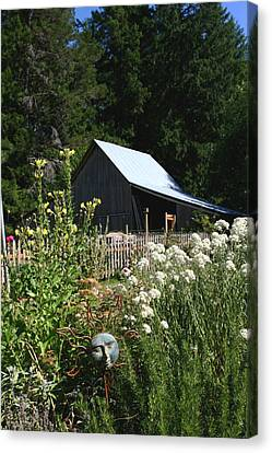Canvas Print featuring the photograph Sun Barn by Lorraine Devon Wilke