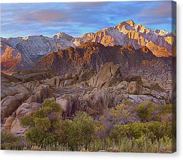 Sun Illuminating The Alabama Hills Canvas Print by Tim Fitzharris