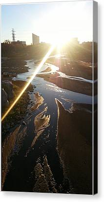 Sun Ray Canvas Print by David Alvarez