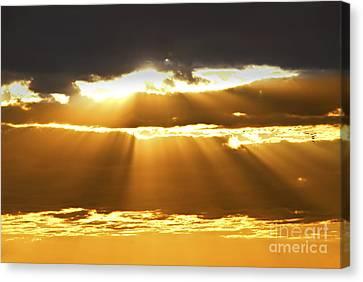 Sun Rays At Sunset Sky Canvas Print by Elena Elisseeva