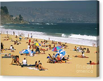 Sunbathers Canvas Print by David Frazier and Photo Researchers