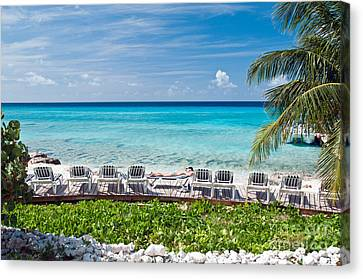 Sunbathing On Grand Turk Canvas Print by Jim Chamberlain
