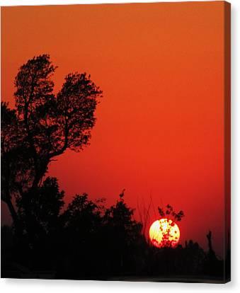 Sundown Canvas Print by Todd Sherlock