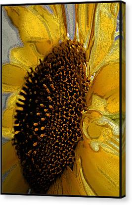 Canvas Print featuring the photograph Sunflower Side by Lou Belcher