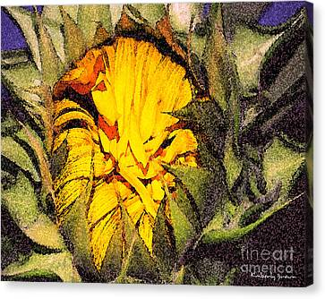 Sunflower Slumber Canvas Print