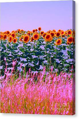 Canvas Print featuring the photograph Sunflowers by Ann Johndro-Collins