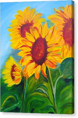 Sunflowers For California Lovers Canvas Print by Dani Altieri Marinucci