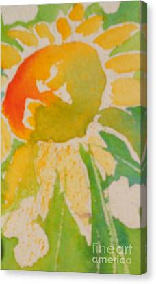Sunflowers In My Cottage Garden At Silver Vista Canvas Print