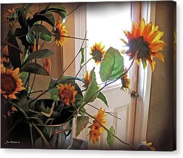Sunflowers In Pots Canvas Print by Joan  Minchak