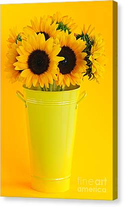 Sunflowers In Vase Canvas Print by Elena Elisseeva