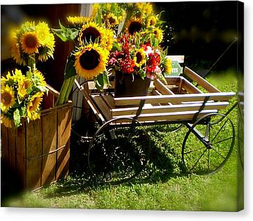 Canvas Print featuring the photograph Sunflowers  by Susan Elise Shiebler