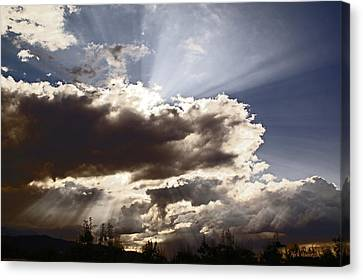 Sunlight And Stormy Skies Canvas Print by Mick Anderson