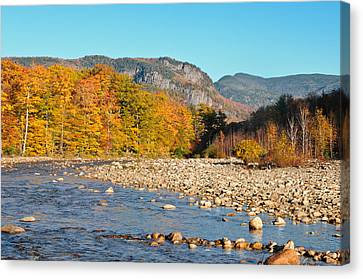Sunlight On The Saco Canvas Print by Geoffrey Bolte