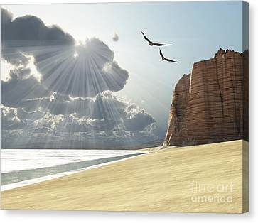 Flying Seagull Canvas Print - Sunlight Shines Down On Two Birds by Corey Ford