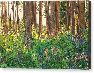 Sunlit Canvas Print by Robin Birrell