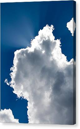 Sunny Cloud Canvas Print by Robert Hellstrom