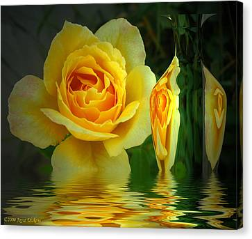 Sunny Delight And Vase 2 Canvas Print by Joyce Dickens