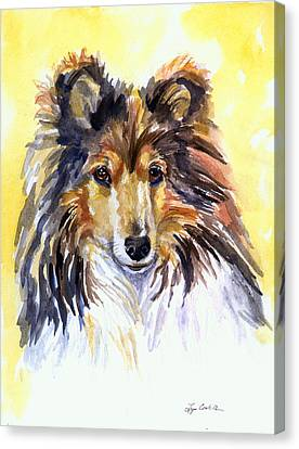Sunny Sheltie Canvas Print by Lyn Cook