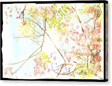 Sunny Skies Above Canvas Print by Leysilie Williams