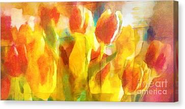 Sunny Tulips Canvas Print by Lutz Baar