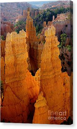 Sunrise At Bryce  Canvas Print by Vicki Pelham