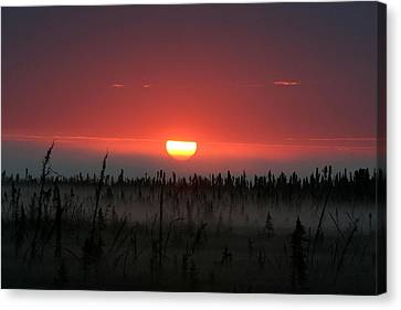 Sunrise At Kenai Peninsula Canvas Print by Mary Gaines
